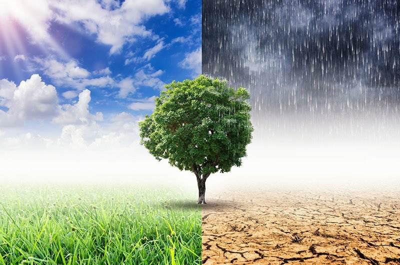 Startups to improvise climate change with technology