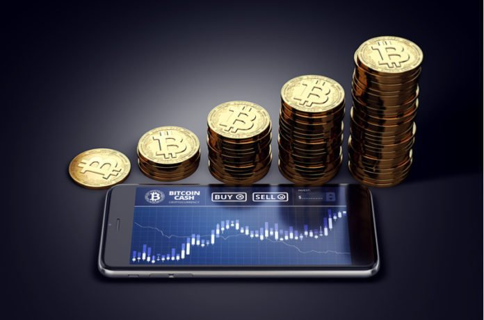 Bitcoin cash price drops by 8% | iTMunch