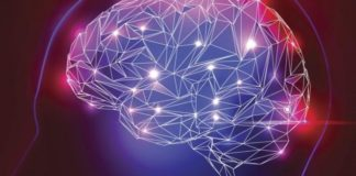 Brain decoder turns brain signals into speech | iTMunch