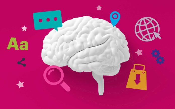 Neuroscience and beauty | iTMunch