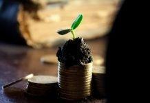 seed funding