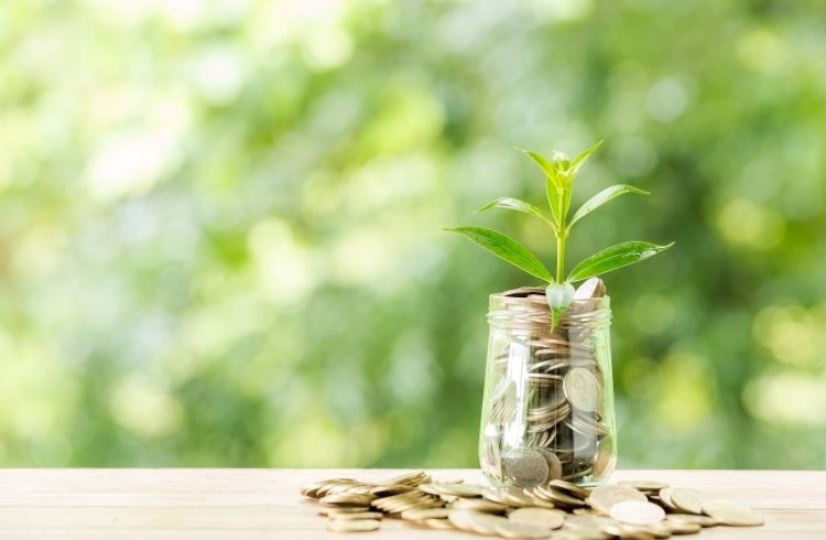 seed funding for startup | iTMunch