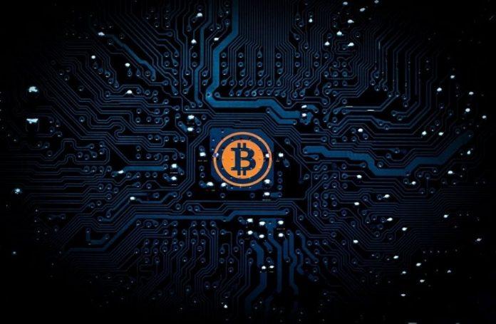 bitcoin wallet safety tips | iTMunch
