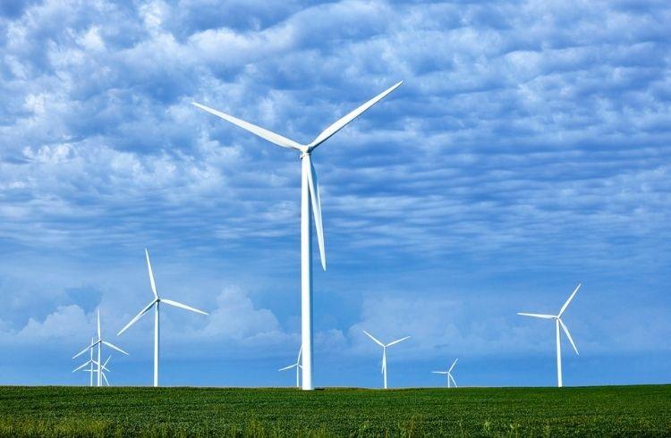 Windmills generating clean energy